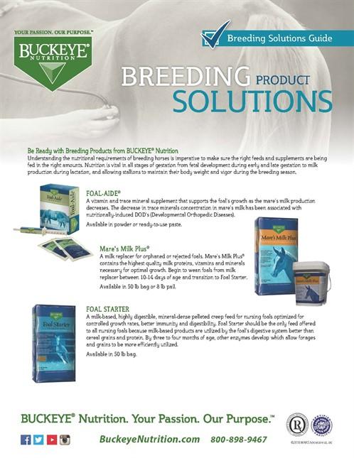 Breeding Solutions-Product Guide.jpg